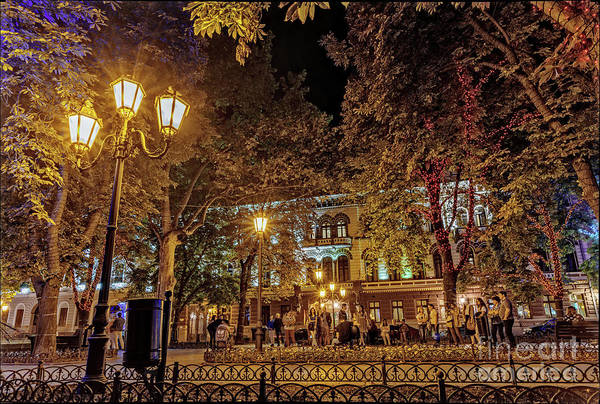 Evening Wall Art - Photograph - Primorsky Boulevard At Night by Viktor Birkus