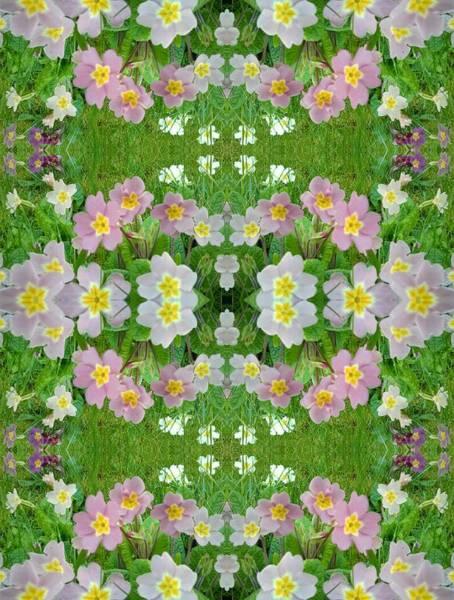 Photograph - Primula Pattern 1 Double by Julia Woodman