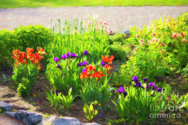 Digital Art - Prince's Island Flower Bed by Donna L Munro