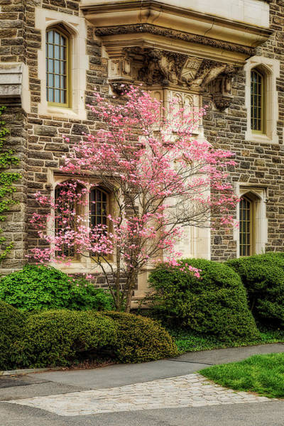 Photograph - Princeton University Patton Hall  by Susan Candelario