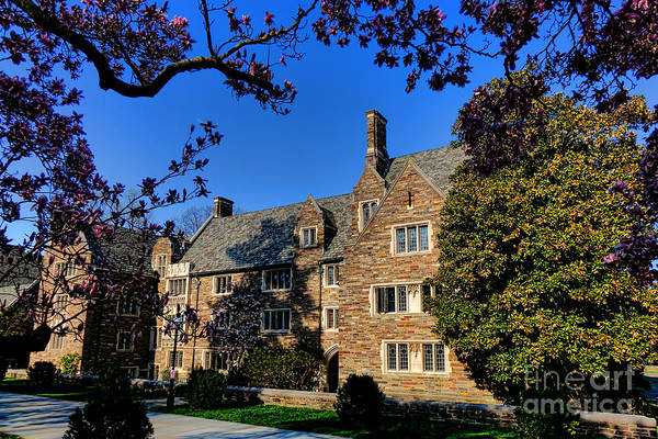 Photograph - Princeton University Pyne Hall And Trees by Olivier Le Queinec