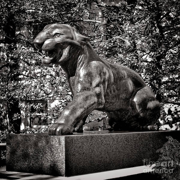Photograph - Princeton University Tiger Sculture by Olivier Le Queinec
