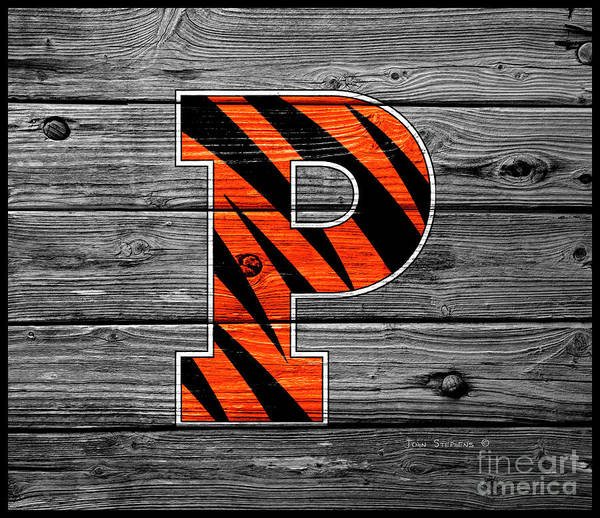 Wall Art - Photograph - Princeton University Tigers Logo On Weathered Wood by John Stephens