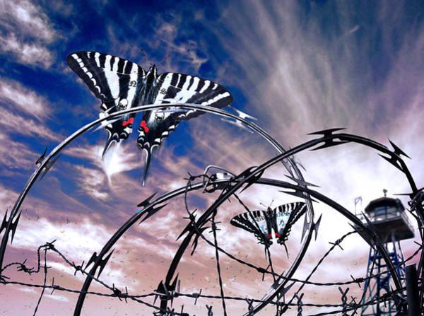 Digital Art - Prison Butterflies by Rick Mosher