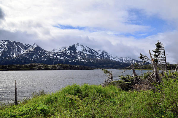 Photograph - Pristine Lake At Fraser British Columbia by Barbara Snyder
