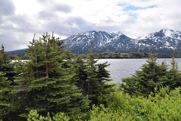 Photograph - Pristine Lake At The Gateway To The Yukon by Barbara Snyder