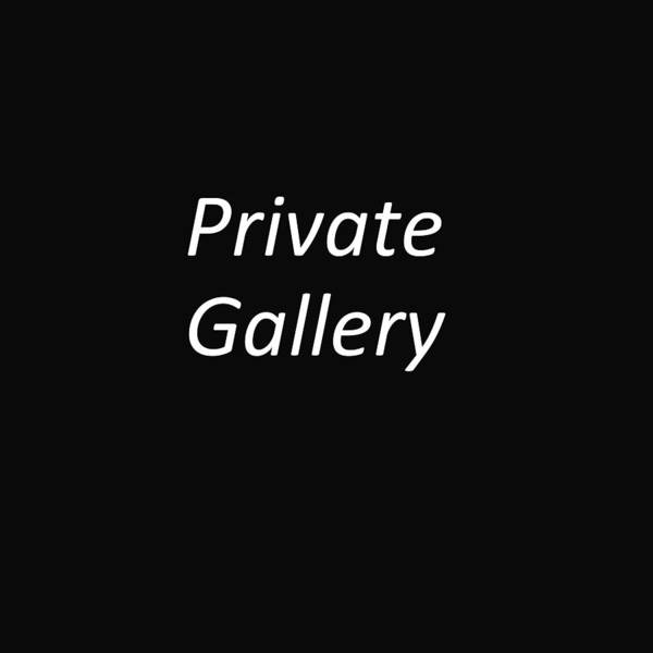 Private Gallery Art Print