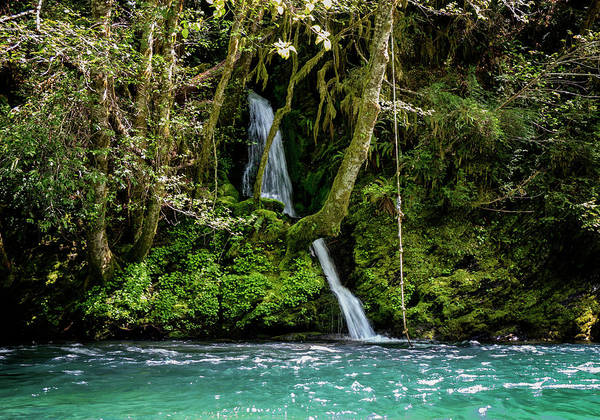 Wall Art - Photograph - Private Swimming Hole by Betty Depee