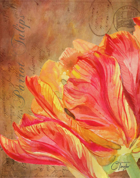 Tulips Mixed Media - Le Professeur Parrot by Colleen Taylor