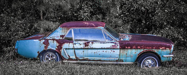 Down The Drain Wall Art - Photograph - Profile Of A 1965 Mustang by Alicia Collins