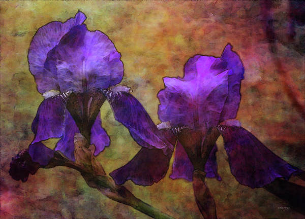 Photograph - Progression 9938 Idp_2 by Steven Ward