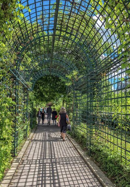 Photograph - Promenade Plante by Gary Karlsen