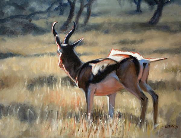 Painting - Pronking Springbock by Christopher Reid