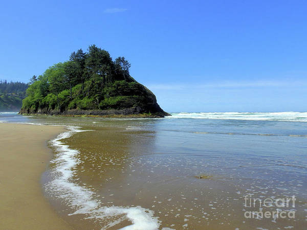 Wall Art - Photograph - Proposal Rock Coastline by Scott Cameron