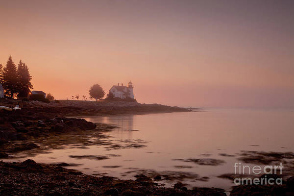 Wall Art - Photograph - Prospect Harbor Dawn by Susan Cole Kelly