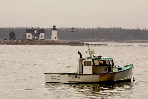 Wall Art - Photograph - Prospect Harbor Lighthouse by Brent L Ander