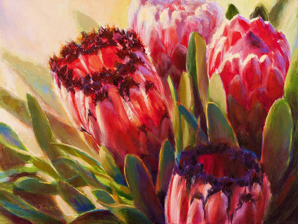 Rainforest Painting - Pink Mink Protea - Tropical Flowers - Botanical Floral Painting - Hawaii Art - Protea Neriifolia by Karen Whitworth