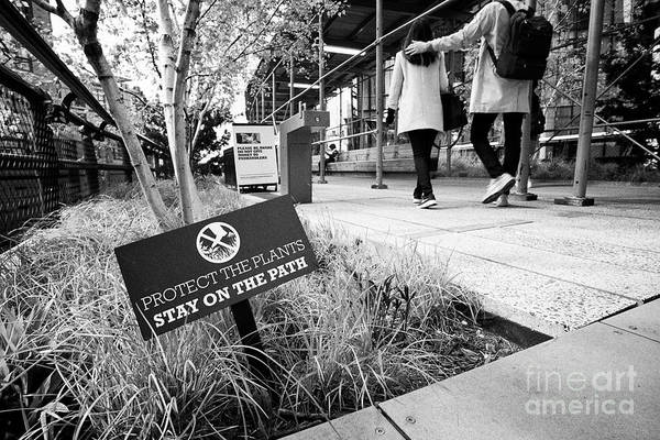 Wall Art - Photograph - protect plants stay on the path sign on the high line elevated park walkway New York City USA by Joe Fox
