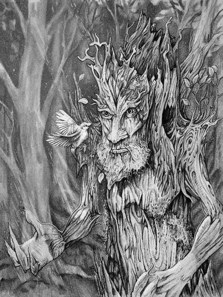 Jrr Drawing - Protector Of The Forest by Aaron Spong