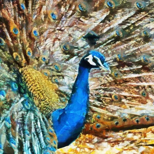Digital Art - Proud As A Peacock by Charmaine Zoe