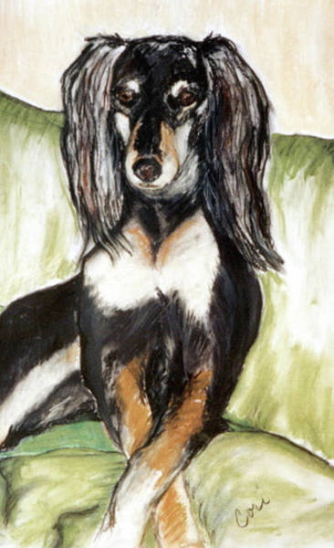 Sight Hound Drawing - Proud Girl by Cori Solomon