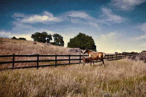 Boundary County Photograph - Proud Mother by John K Woodruff