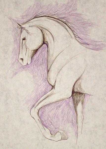 Warmbloods Drawing - Pround Walker by Jennifer Fosgate