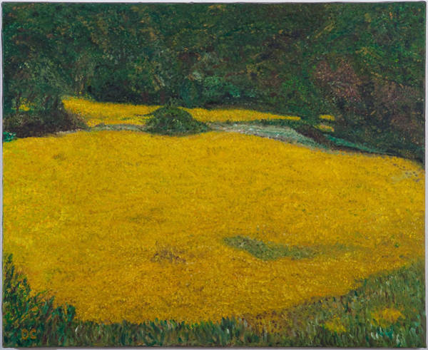 Mustard Field Painting - Provence by Dan Castle