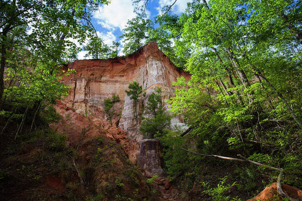 Photograph - Providence Canyon 3 by Kenny Thomas