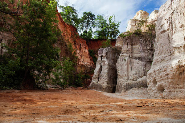 Photograph - Providence Canyon 7 by Kenny Thomas