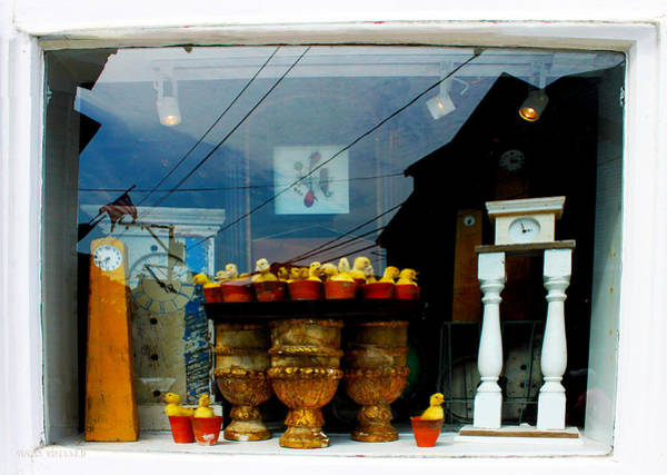 Photograph - Proviencetown Window With Chicks by Susan Vineyard