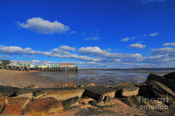 Provincetown Harbor Photograph - Provincetown by Catherine Reusch Daley