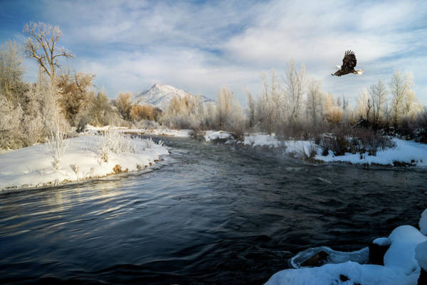 Provo River In Winter Art Print