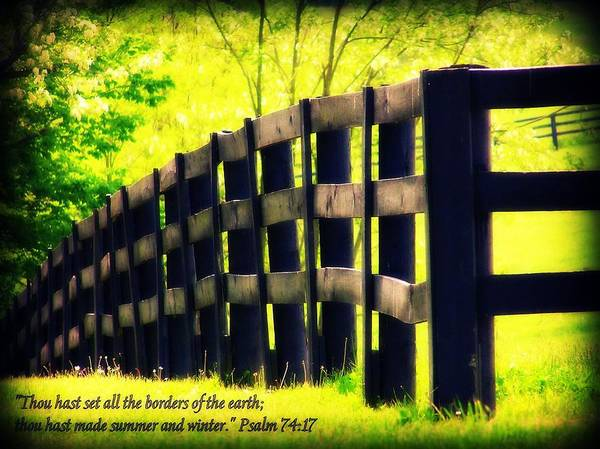 Photograph - Psalm 74 Verse 17 by Susie Weaver