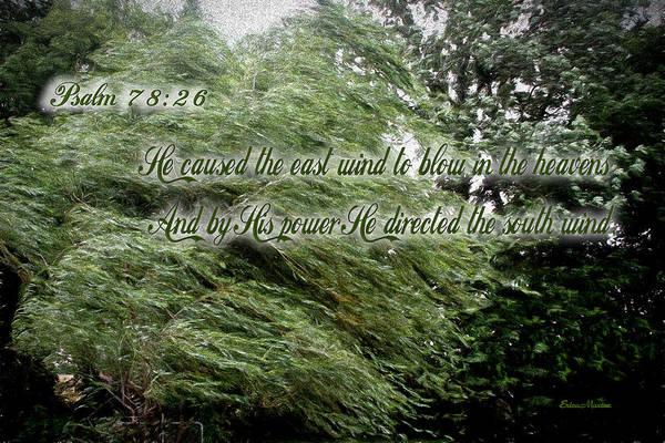 Photograph - Psalm 78-26 by Ericamaxine Price