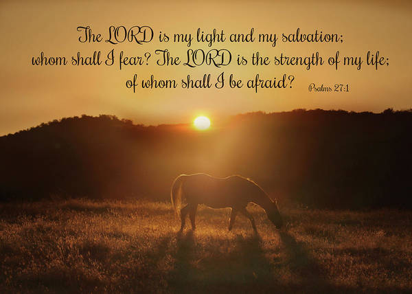 Psalms Photograph - Psalms The Lord Is My Light Horse In The Sunrise Bible Spiritual Verse by Stephanie Laird