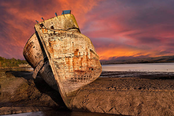 Wall Art - Photograph - Pt. Reyes Moored  by Kathleen Bishop