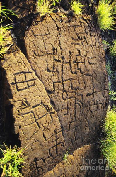 Wall Art - Photograph - Puako Petroglyphs by Mary Van de Ven - Printscapes