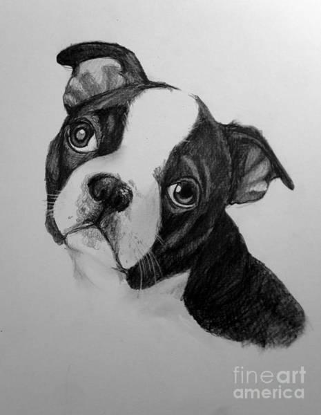 Puck Art Print