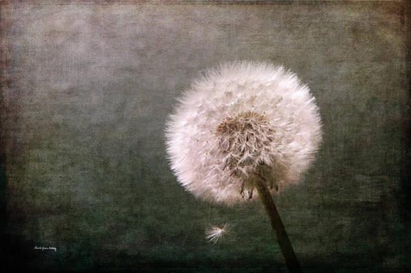 Photograph - Puff Dandelion by Randi Grace Nilsberg
