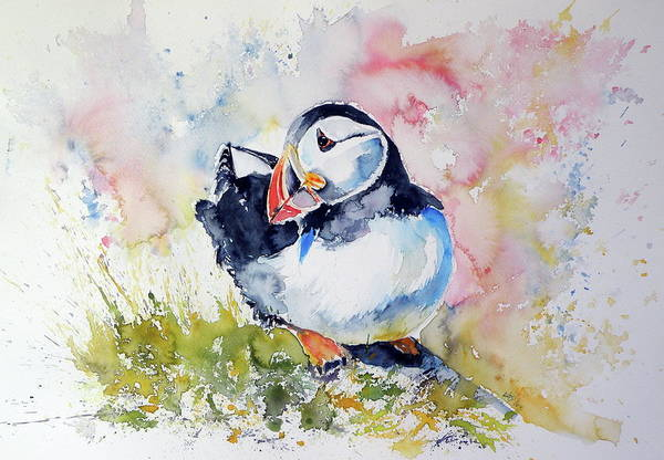 Puffins Wall Art - Painting - Puffin On Stone by Kovacs Anna Brigitta