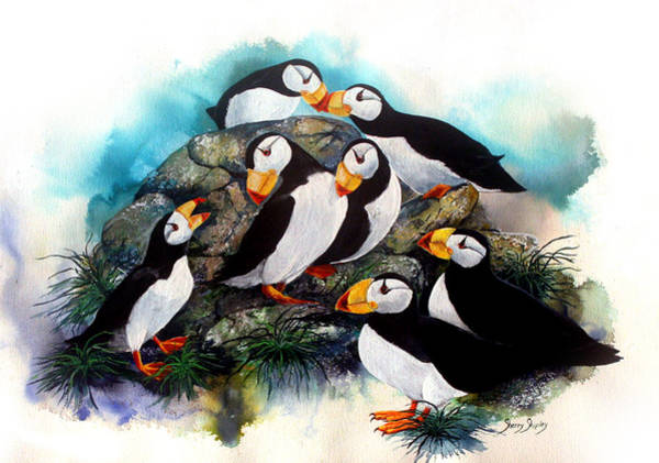 Painting - Puffin Party by Sherry Shipley