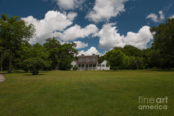 Photograph - Puffy White Clouds Over Pinckney Plantation by Dale Powell