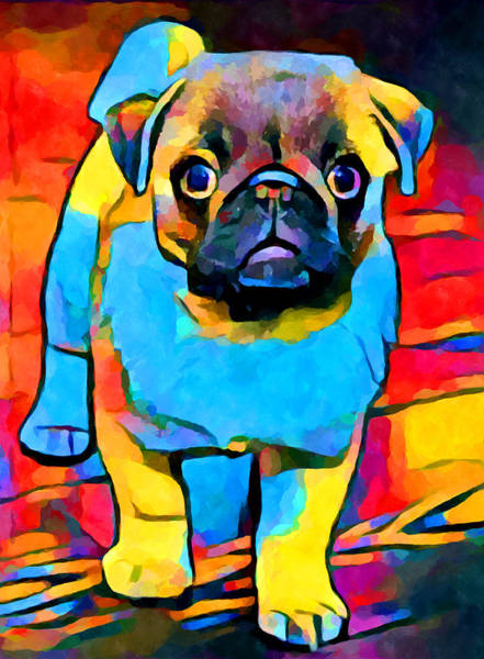 Wall Art - Painting - Pug 2 by Chris Butler