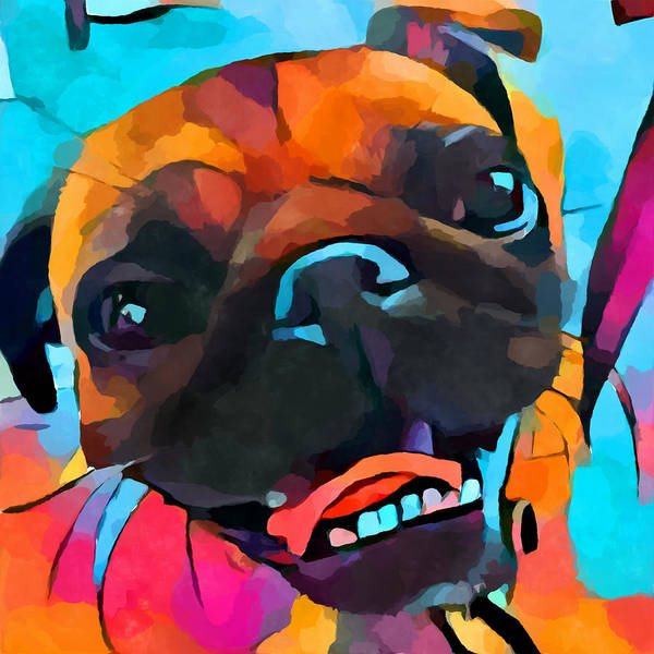 Wall Art - Painting - Pug 3 by Chris Butler