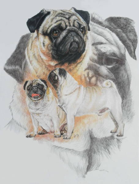 Mixed Media - Pug Revamp by Barbara Keith