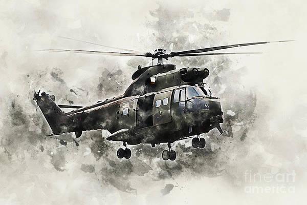 Puma Digital Art - Puma 2 - Painting by J Biggadike