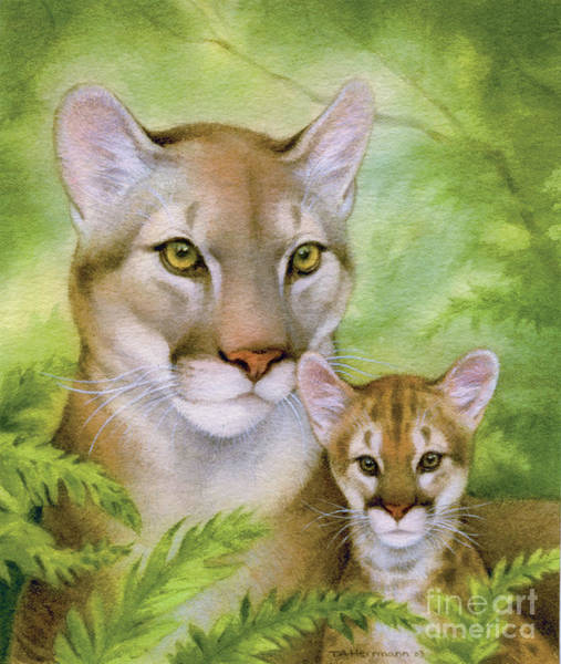 Fall Painting - Puma And Cub by Tracy Herrmann
