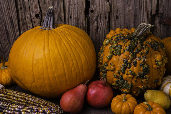 Gourd Photograph - Pumpkin Autumn Still Life by Garry Gay