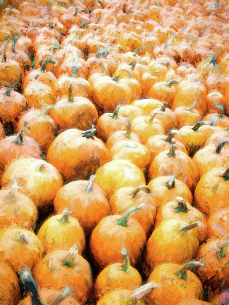 Pumpkin Collection Art Print